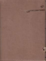 書籍 日本植物総覧補遺 根本莞爾編 春陽堂