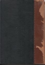 書籍 大審院民事判決録 8 大正5-6年 新日本法規出版