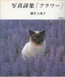 書籍 写真詩集 フラワー 藤井八重子 町田ジャーナル社