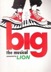 パンフレット big the musical LION フジテレビ開局40周年記念企画