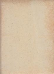 書籍 憲法百年 憲法学会編