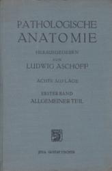 書籍 Pathologische Anatomie Ludwig Aschoff Jena Gustav fischer