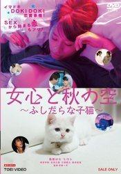 女心と秋の空 ―ふしだらな子猫―【DVD】/春菜はな[新品]
