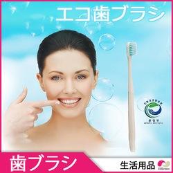歯磨き粉のいらない使い捨て歯ブラシ★NCT LIFE PPL商品★