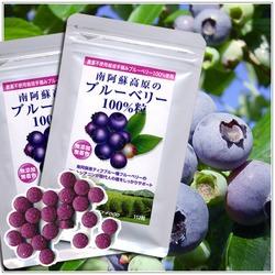 無農薬ブルーベリーノンケミカル100%サプリメント