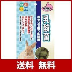 ハイペット 小動物用おやつ 乳酸菌 85g