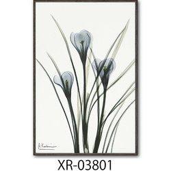 絵画 額入り クロッカス 「植物の持つ繊細美を透明感と優しい色彩で表現」インテリア インテリアアート 壁掛け【店頭受取対応商品】