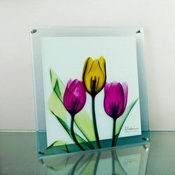 ガラスアート XRAY チューリップ Lサイズ  インテリアアート ガラス 硝子細工 お値段以上の「高級感」「清潔感」トイレや玄関先・リビングのインテリアアートとして壁面をおしゃれに装飾 複数枚組み合わせると一層おしゃれに。