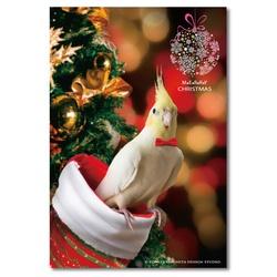 クリスマスポストカード4枚セット