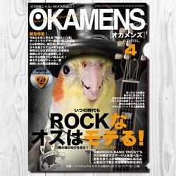 A4クリアファイル オカメンズ4月号 「ROCKなオスはモテてる」