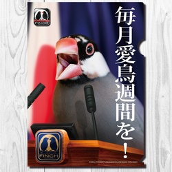 A4クリアファイル フィンチ党 「毎月愛鳥週間を!」