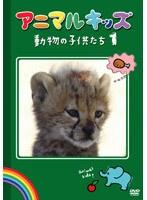【中古】アニマルキッズ 動物の子供たち 1 b13806/ENFD-7038【中古DVDレンタル専用】
