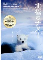 【中古】北極のナヌー b13795/GNBR-7962【中古DVDレンタル専用】